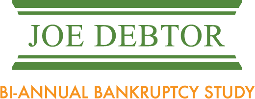 Joe Debtor Bankruptcy Study Archives