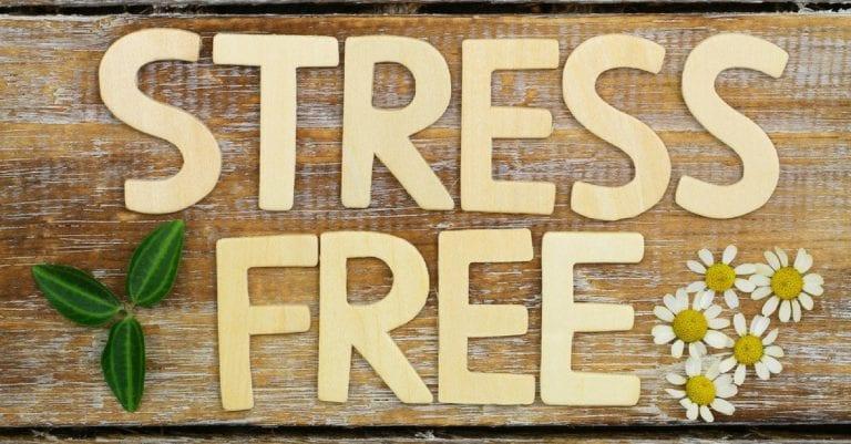 stress-free-experience