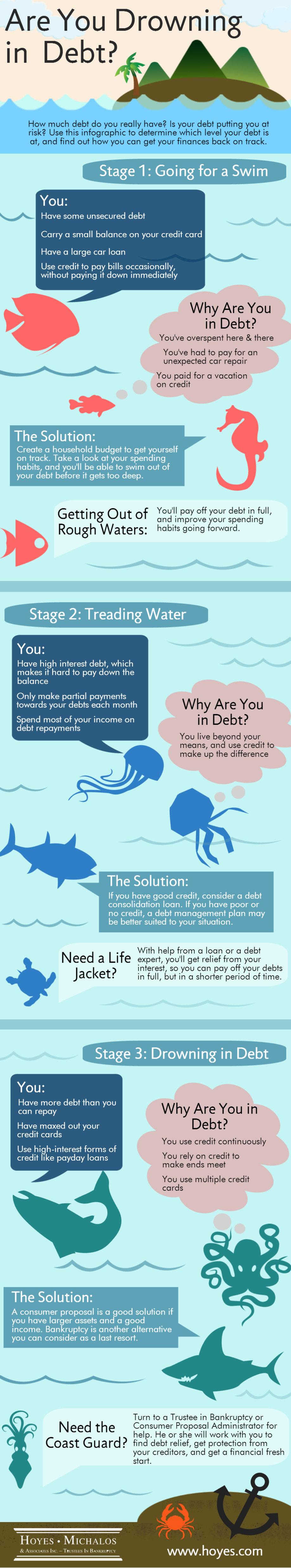 Debt Assessment - Risk